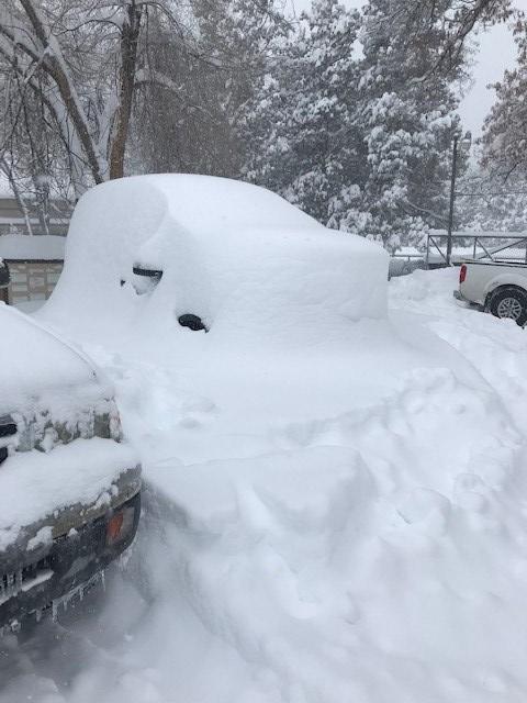 2019 snow